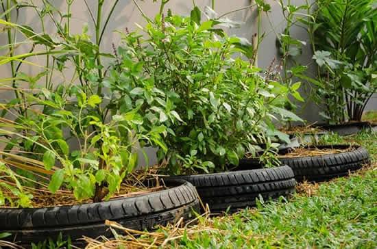 Horta com pneus