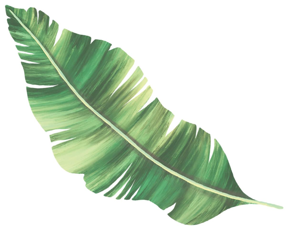Molde de folha verde