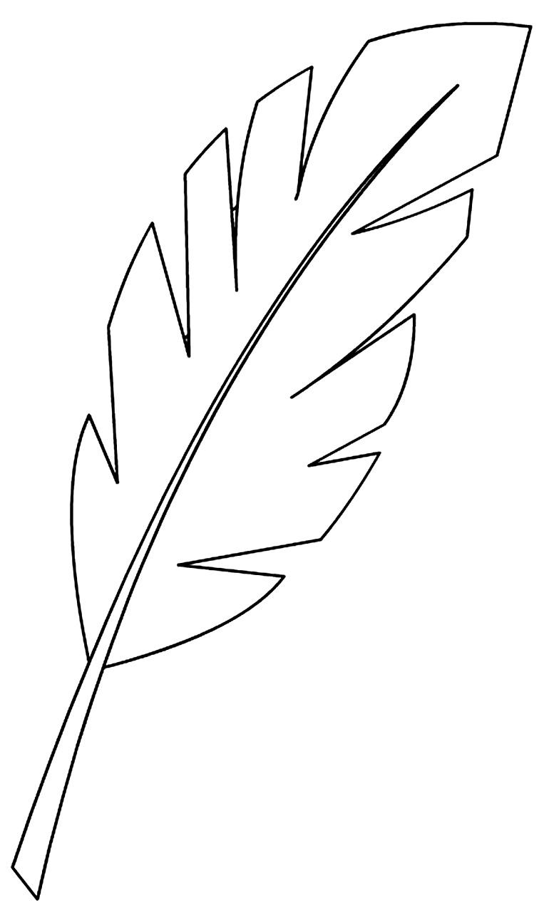Modelo de folha