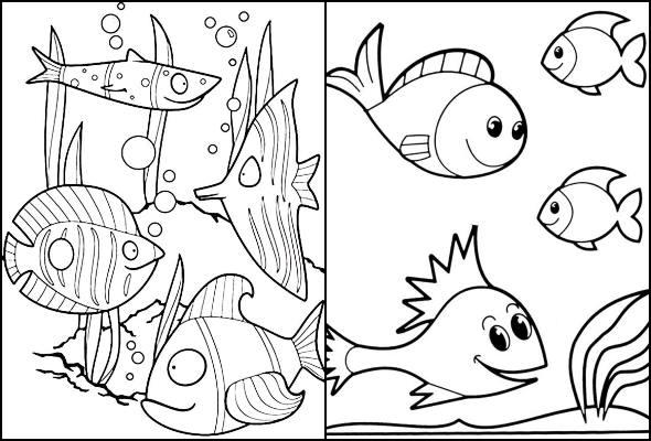 Desenhos de peixes para colorir