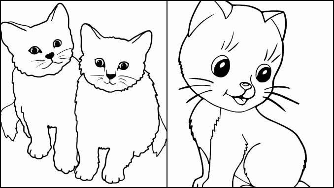 Desenho Gatos