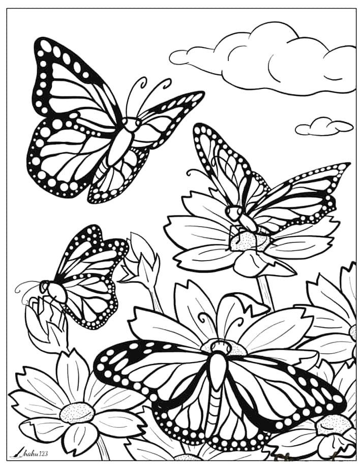 Desenho de borboletas
