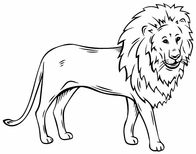 Imagem de leão para pintar