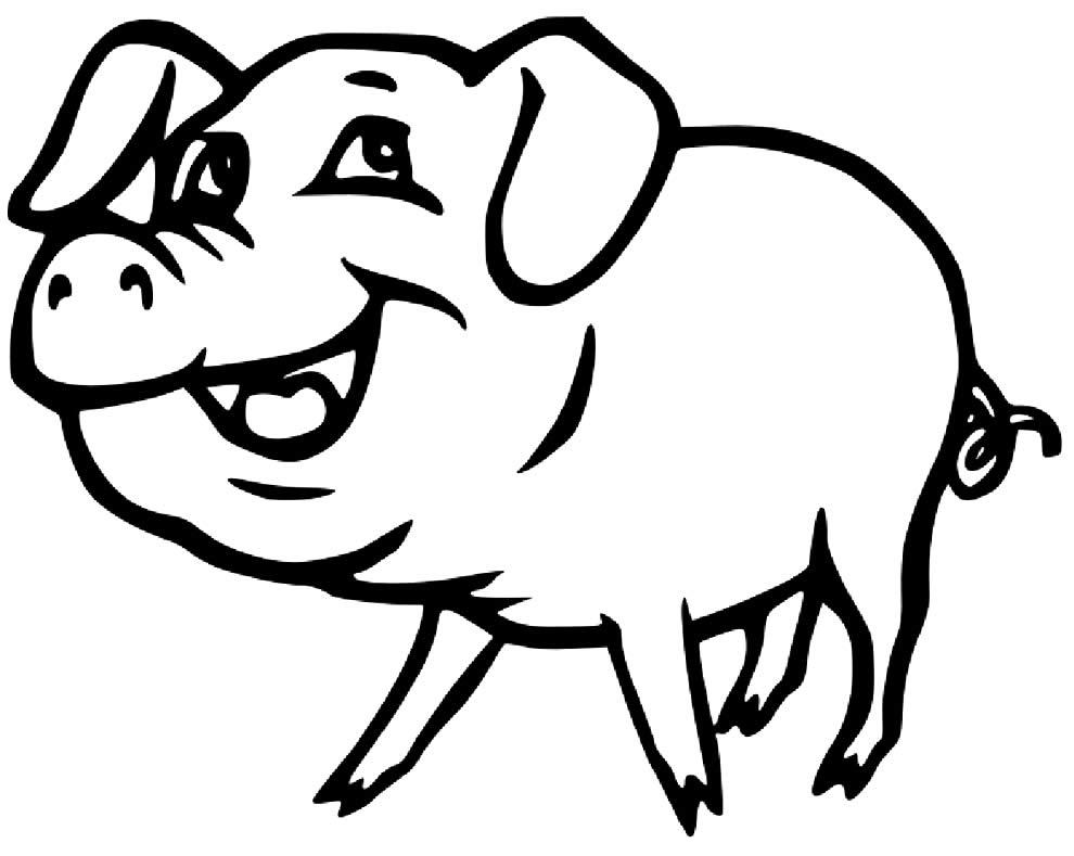 Desenho de porquinho para colorir