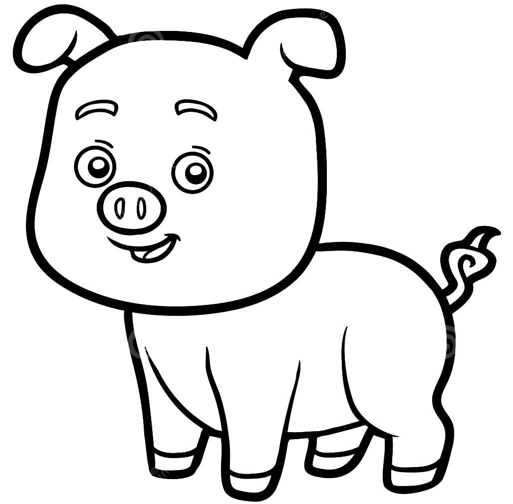 Desenho de porquinho para pintar