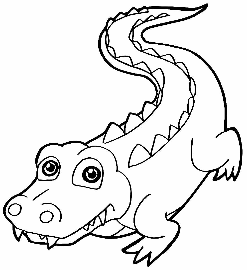 Desenho para colorir de jacaré