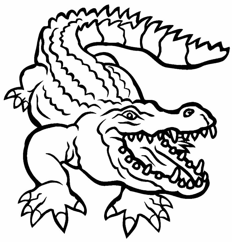 Imagem para colorir de jacaré