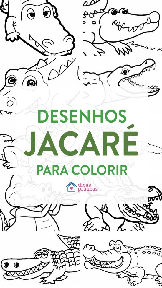 Desenhos de Jacaré para colorir