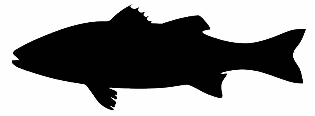 Molde simples de peixe