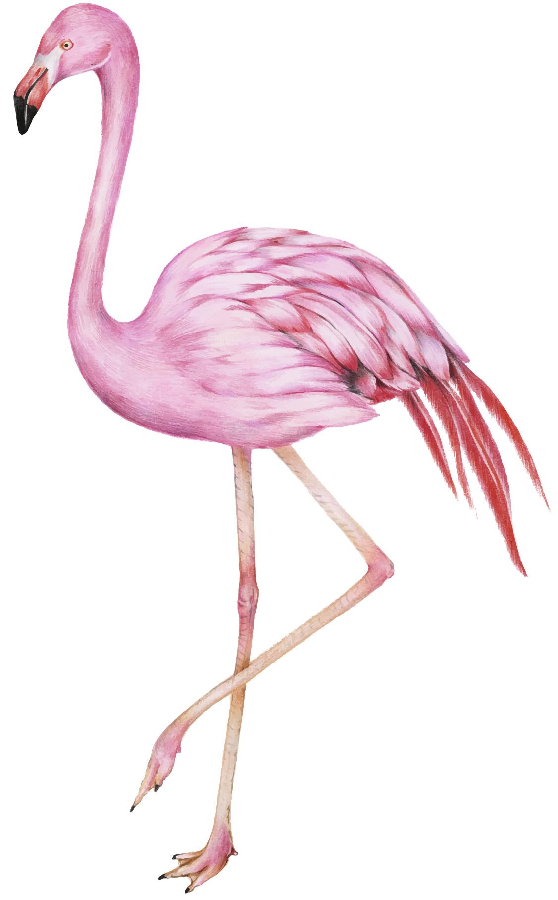 Molde para enfeite de flamingo