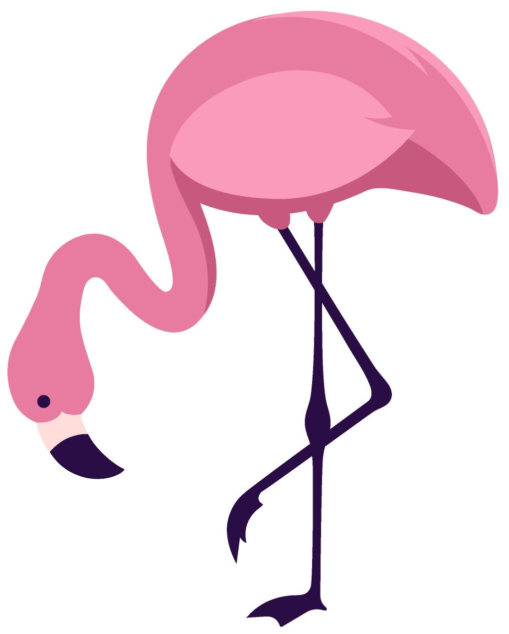 Moldes coloridos de flamingo