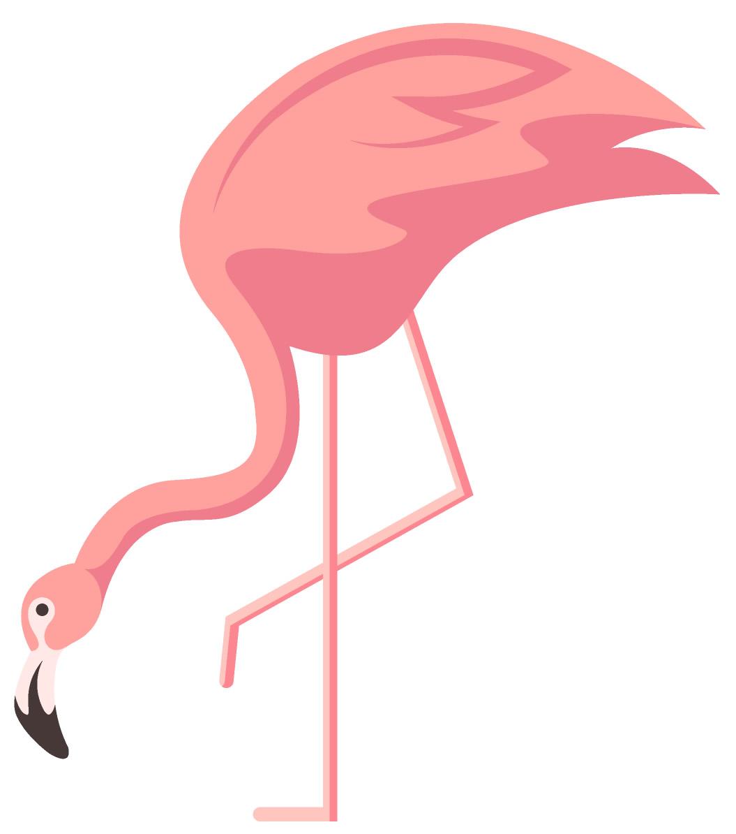 Molde de flamingo colorido