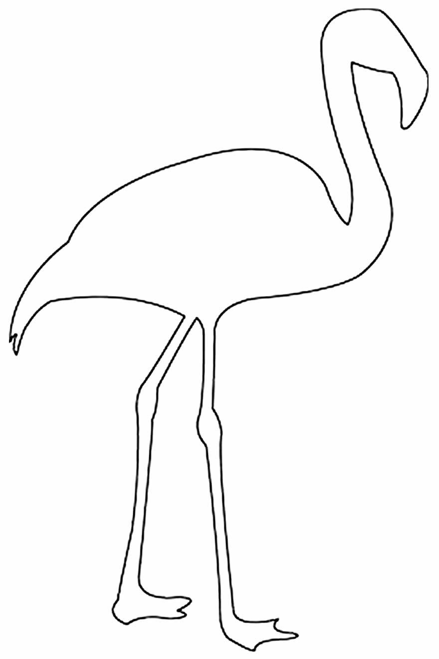 Molde para fazer flamingo