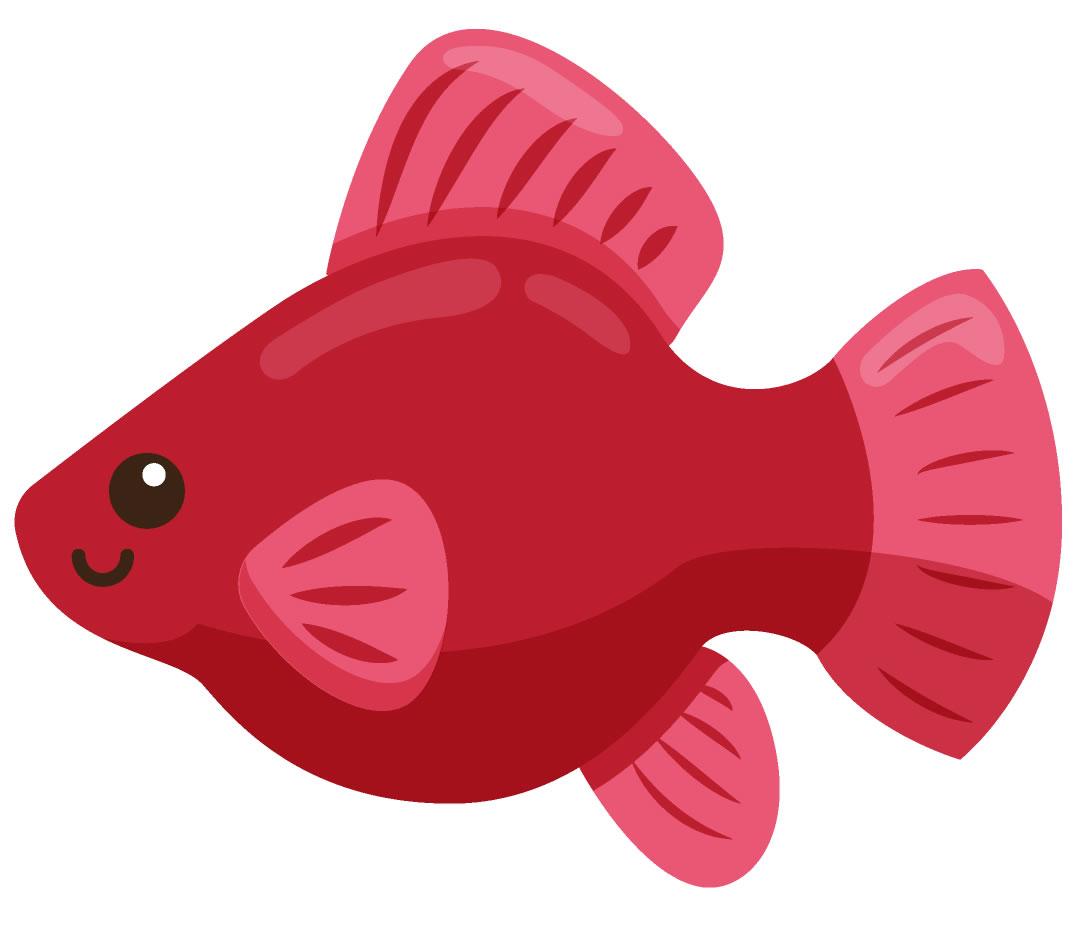 Molde colorido de peixe