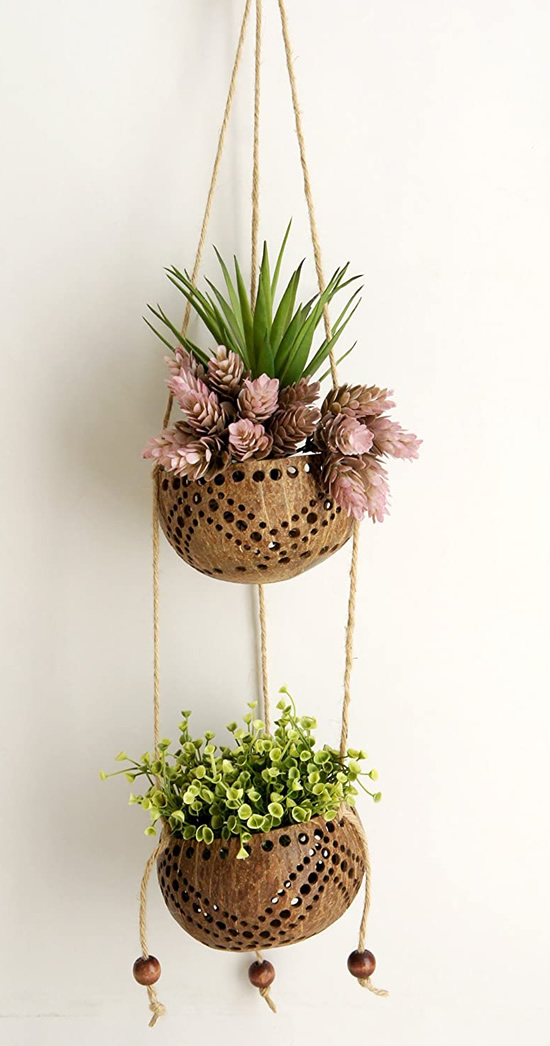 Lindos vasos decorativos com cocos