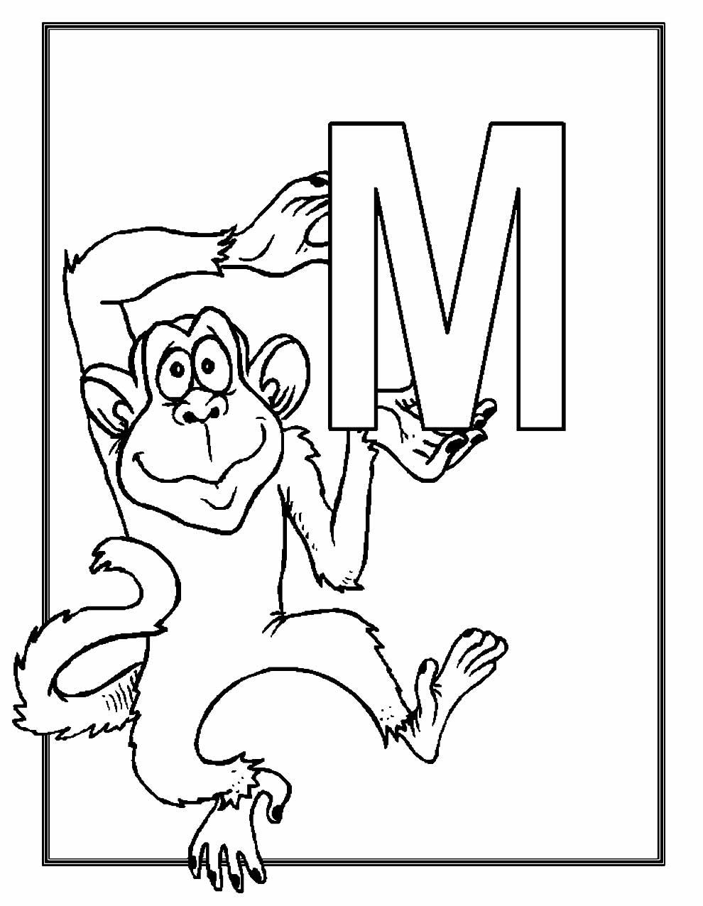 Imagem de macaco para colorir