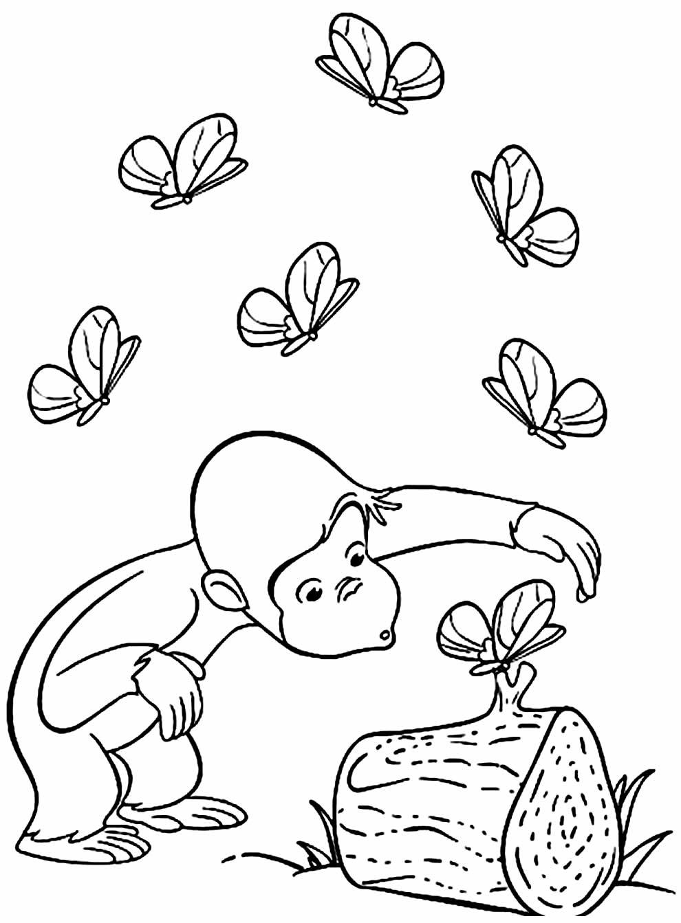 Desenho de macaco para pintar