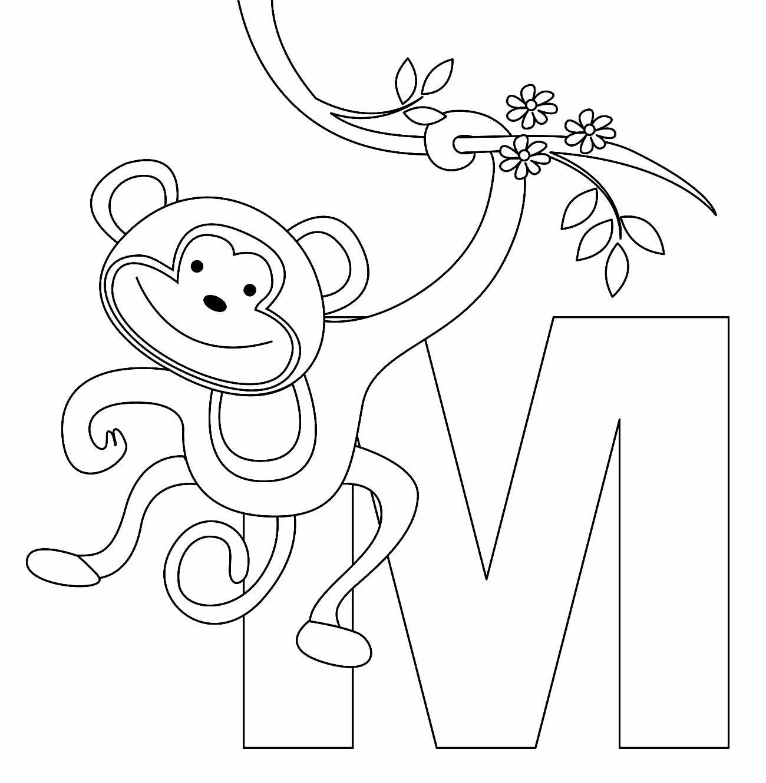 Imagem de macaco para pintar