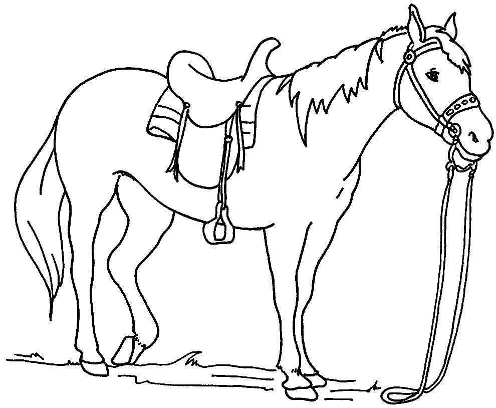 Desenho de Cavalo para pintar