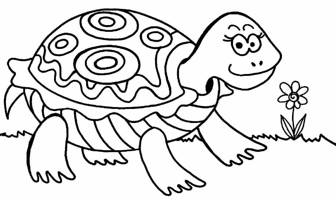Desenho de Tartaruga para colorir