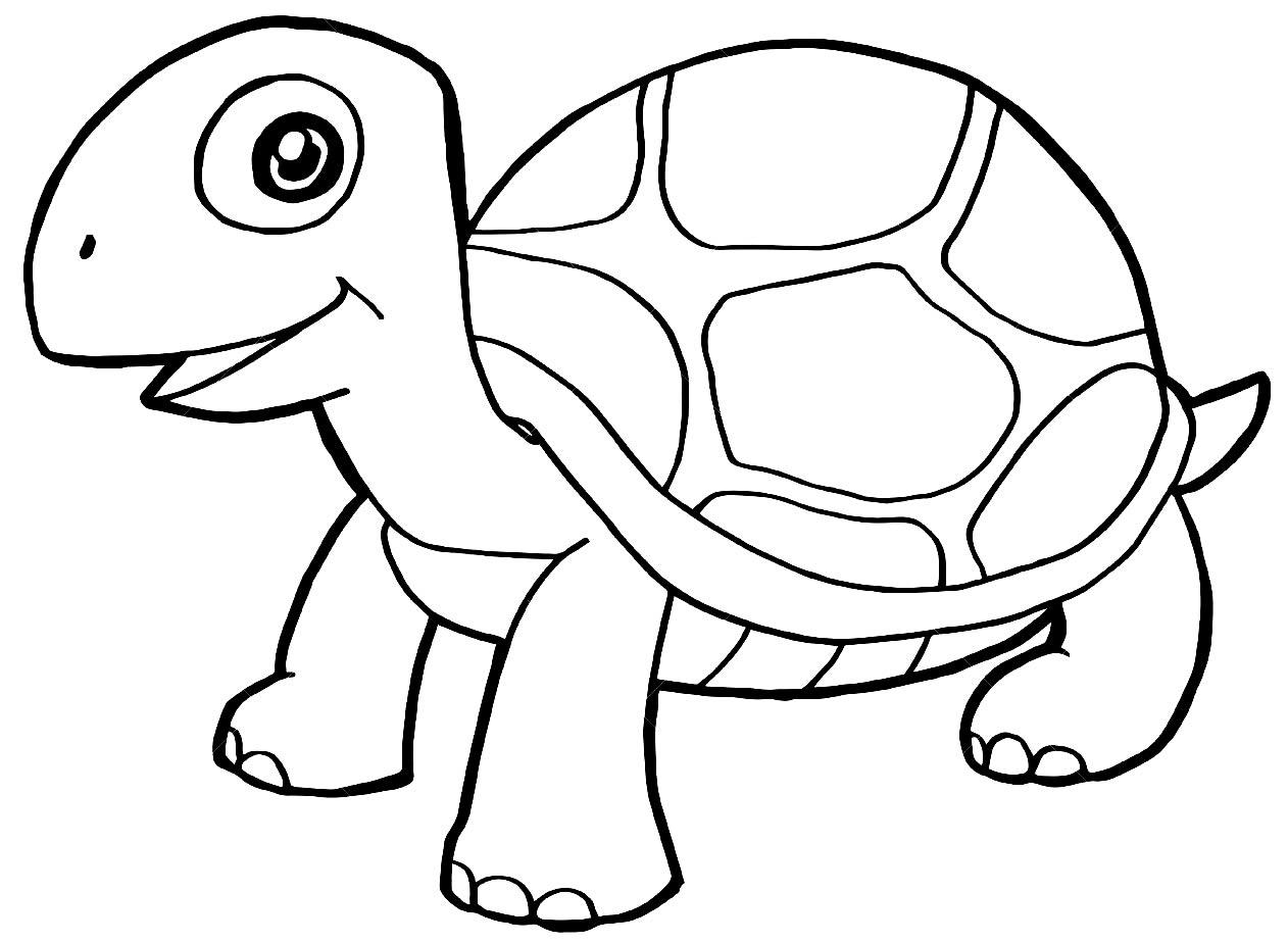 Desenho lindo de Tartaruga