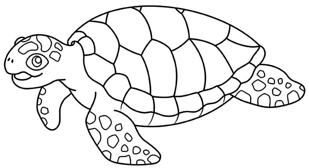 Desenho de Tartaruga para pintar