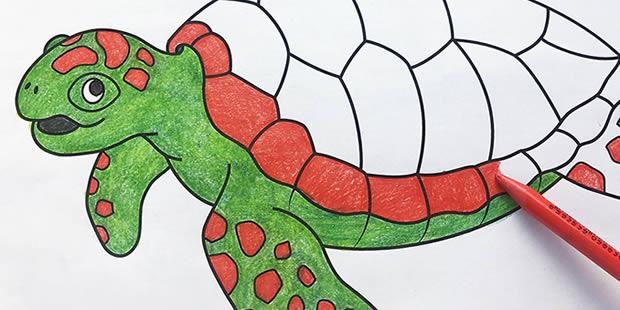 Desenhos para colorir de Tartaruga