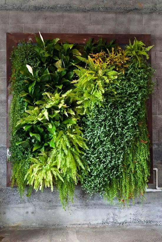 Jardim vertical para inspiração
