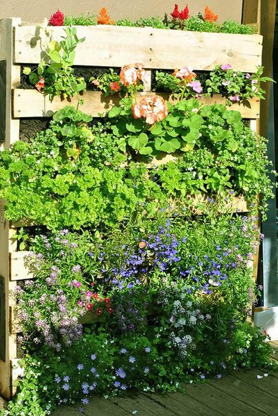 Inspirações para jardim vertical