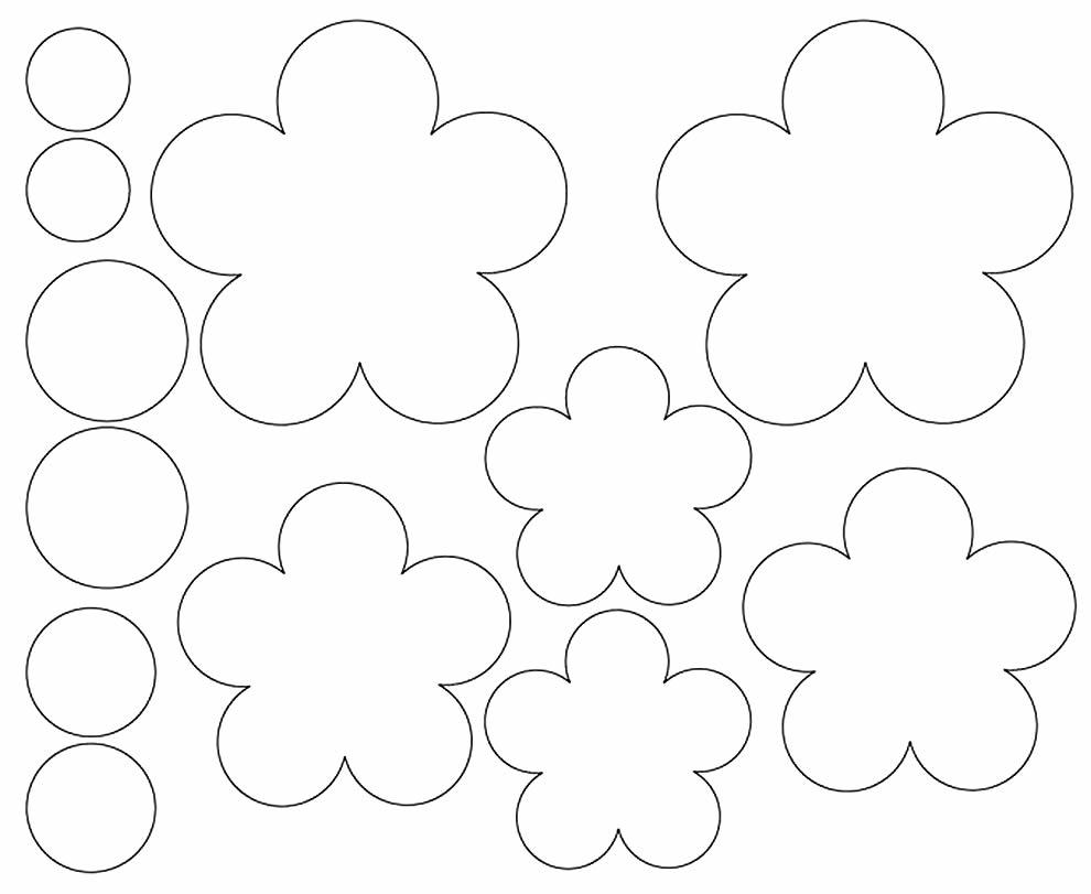 Moldes de pétalas de flores