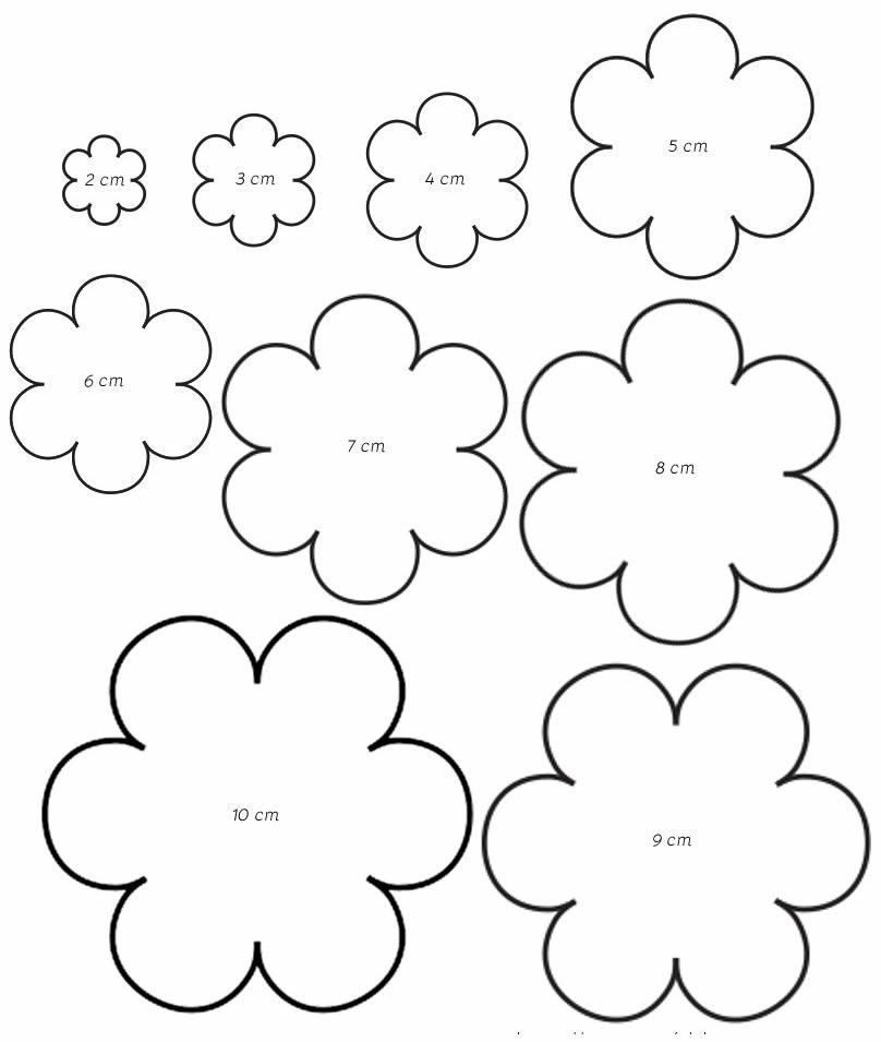 Moldes de flor