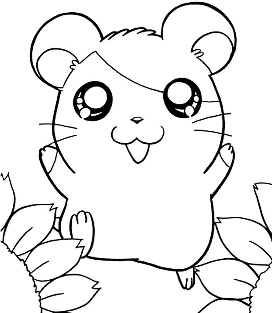 Desenho de Hamtaro para colorir