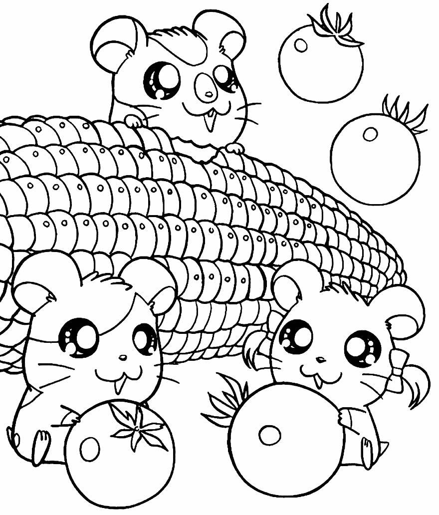 Desenho de Hamtaro para pintar
