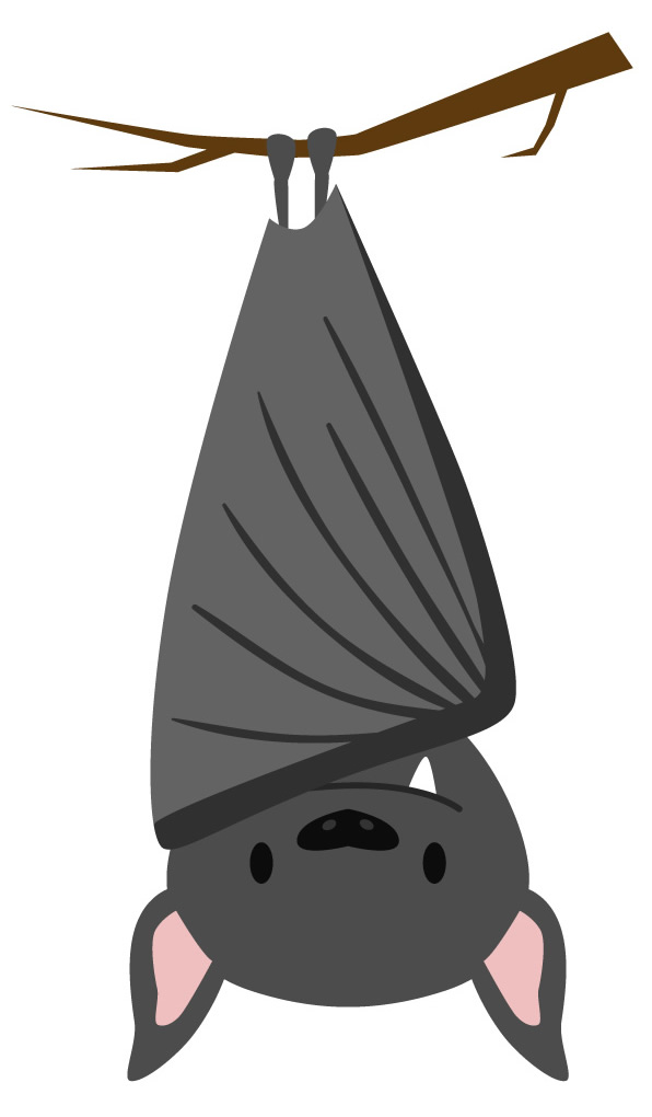 Molde de morcego para fazer personalizado