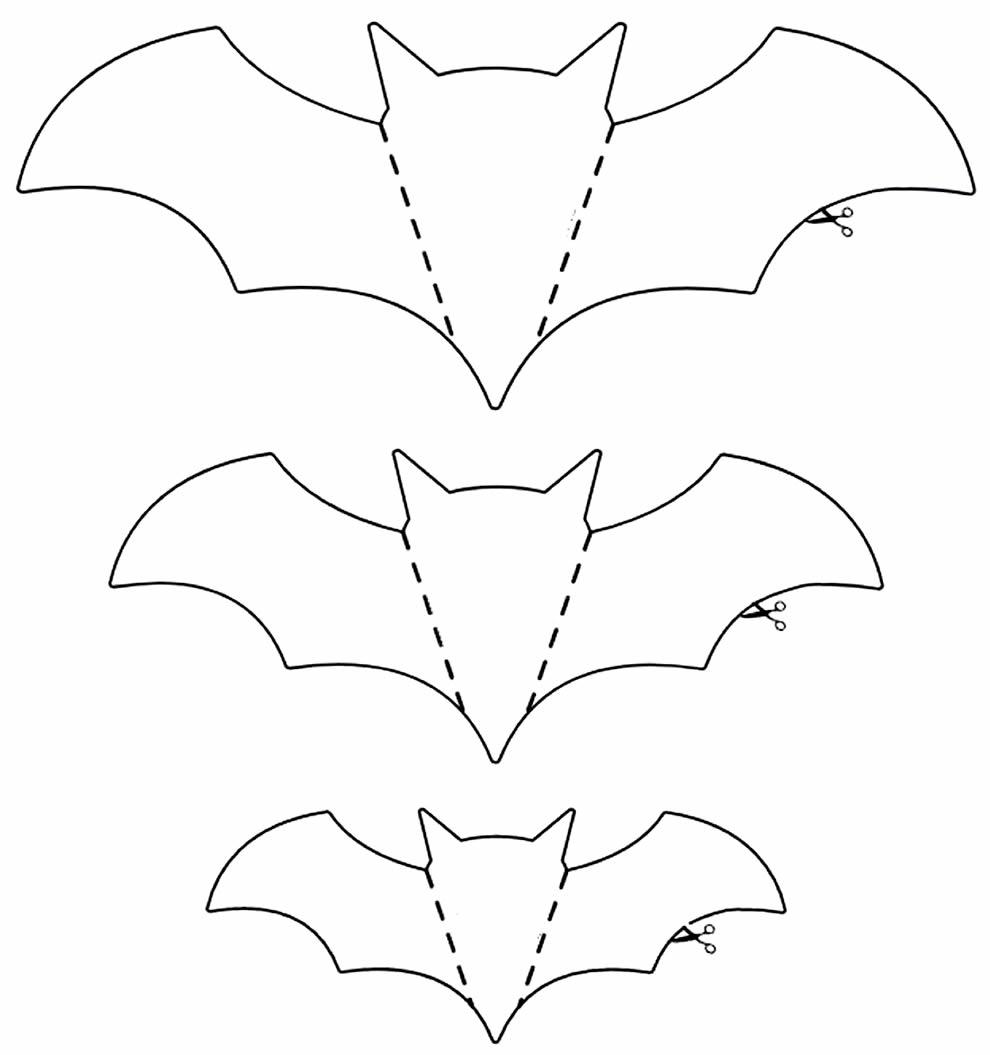 Moldes de Morcego