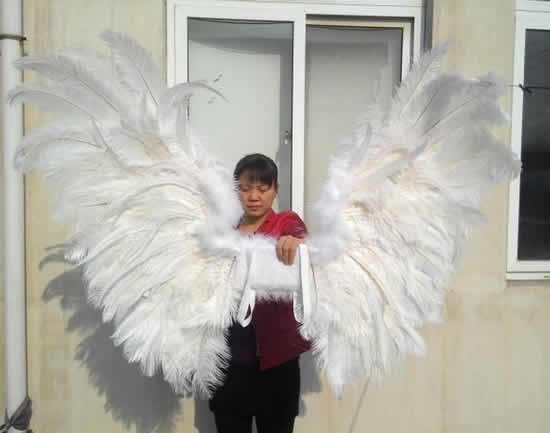 Asa de anjo