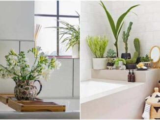 Decoração de banheiro com plantas